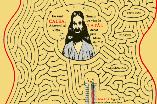 calea-catre-raiE1786F4B-CCEB-DE61-8EF2-187EB81A479B.png