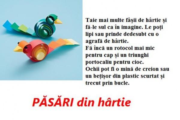 pasari-din-hartie106A44CE-AB71-8204-982E-CFD7BF03E845.jpg